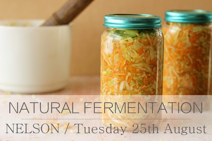 fermenting august